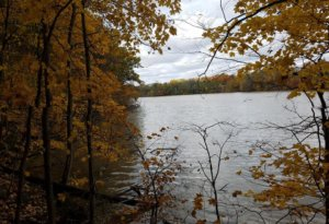 Visit Findlay Guest Blogger Zach shares his (and his dog, Franklin's) favorite Hancock County parks on his must-visit list this Fall! • VisitFindlay.com