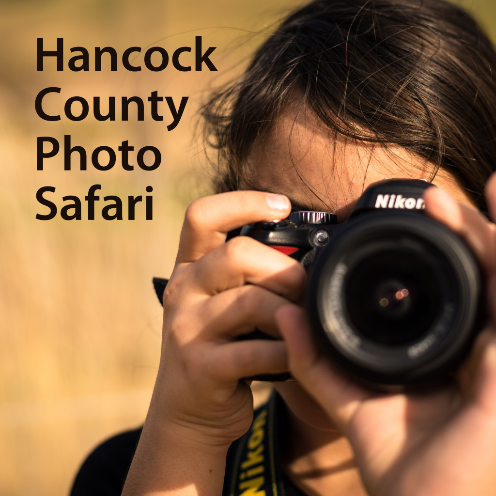 Go on a Photo Safari in Hancock County! Check out our parks, historic homes, barn quilt trail, and much more, use #VisitFindlay to show off your photos! • VisitFindlay.com